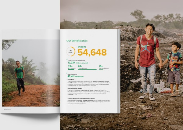 2019 annual report preview